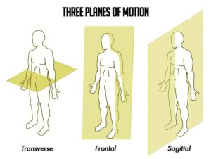 Planes-of-Motion-300x226